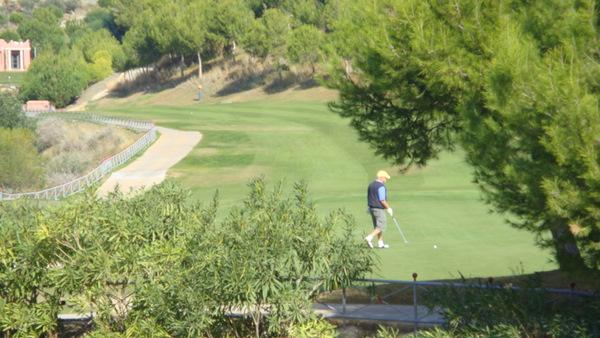 Alferini Golf Villa Padierna Hotel Estepona